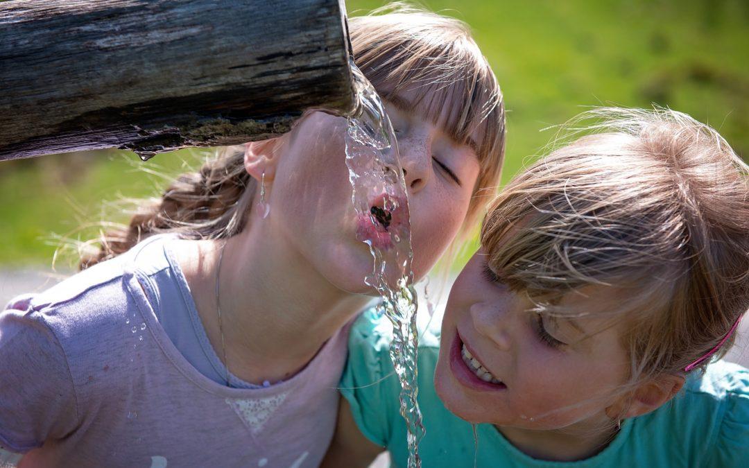Wonderlijke Watertuin genomineerd voor Hoos & Hitte Contest